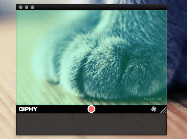GIPHYのスクリーンショット